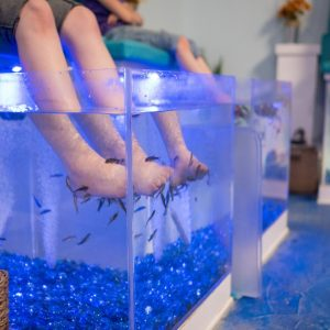Have a day at the spa, the SeaQuest spa!